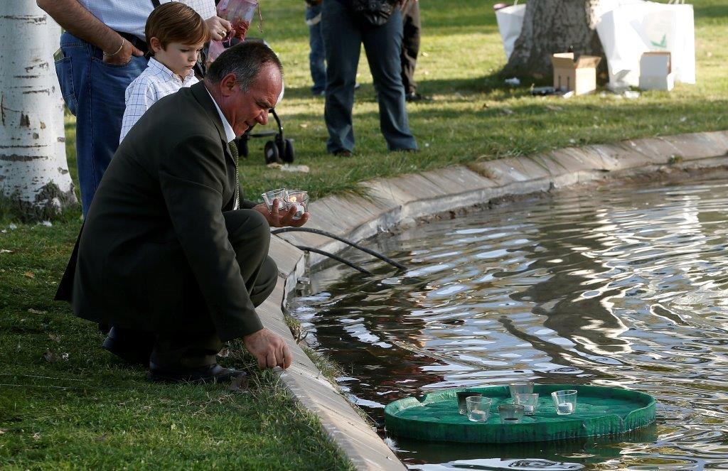 El atardecer de las luces en el cementerio jard n for Cementerio jardin de alcala de henares