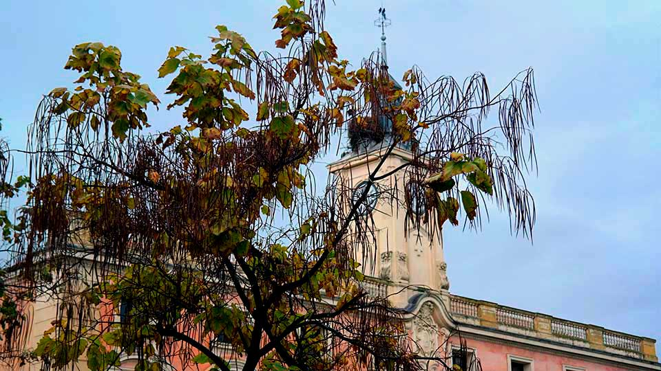 Ayuntamiento otoñal
