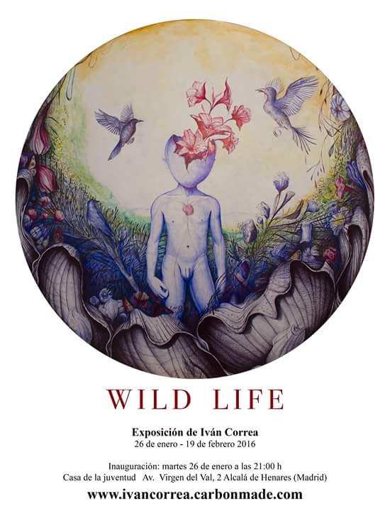 Wild Life en la Casa de la Juventud