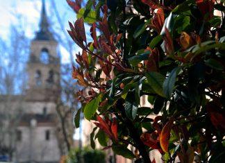 Viernes Santo en Alcalá