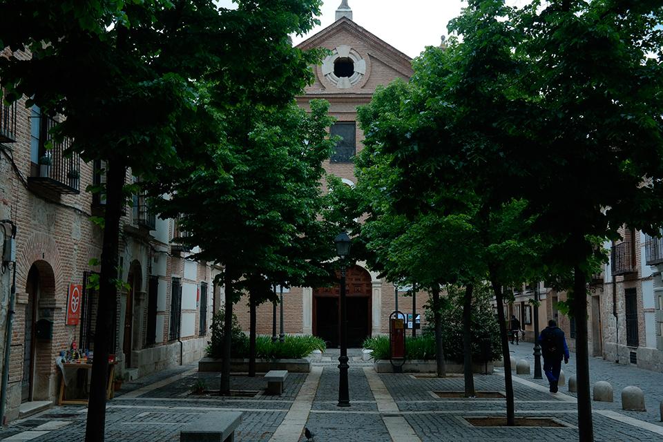 Frondor en la plaza del Padre Lecanda