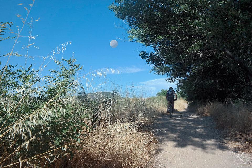 La luna y el ciclista en las riberas del Henares