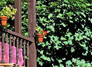 Balconada alcalaína al sol de agosto