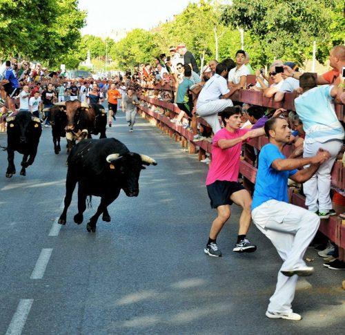 Encierros en Alcalá de Henares. Agosto 2015 . Foto de Ricardo Espinosa Ibeas