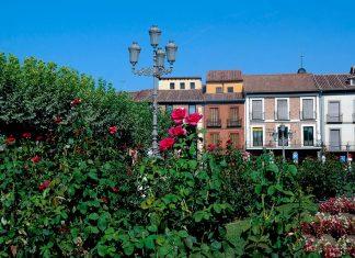 La Plaza de Cervantes sin Cervantes