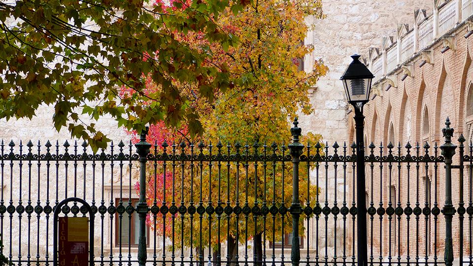 Colores de otoño en el patio de armas arzobispal