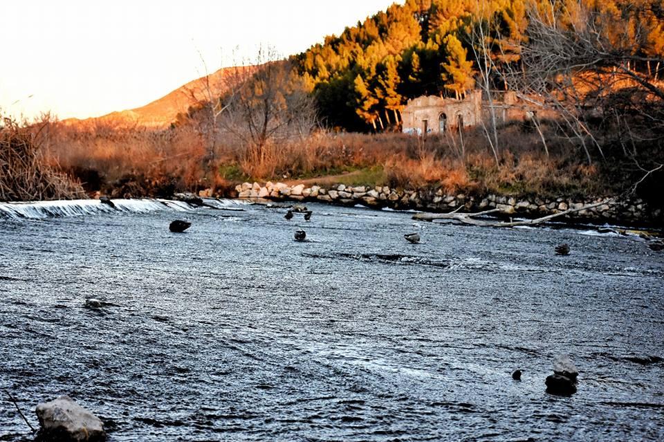 Pago de los Catalanes en la presa de Cayo