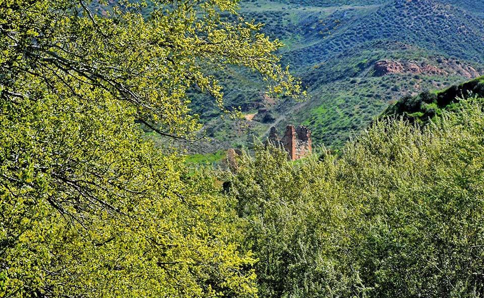 El castillo de Alcalá la Vieja en primavera
