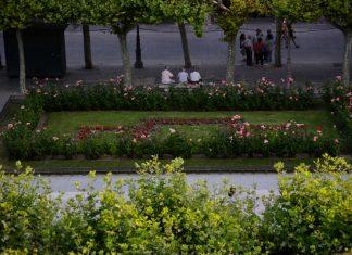 Buscando la sombra en la Plaza de Cervantes
