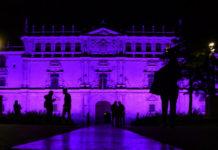 Ecos violetas del Día Internacional para la Eliminación de la Violencia contra la Mujer