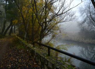 Invierno en el río Henares